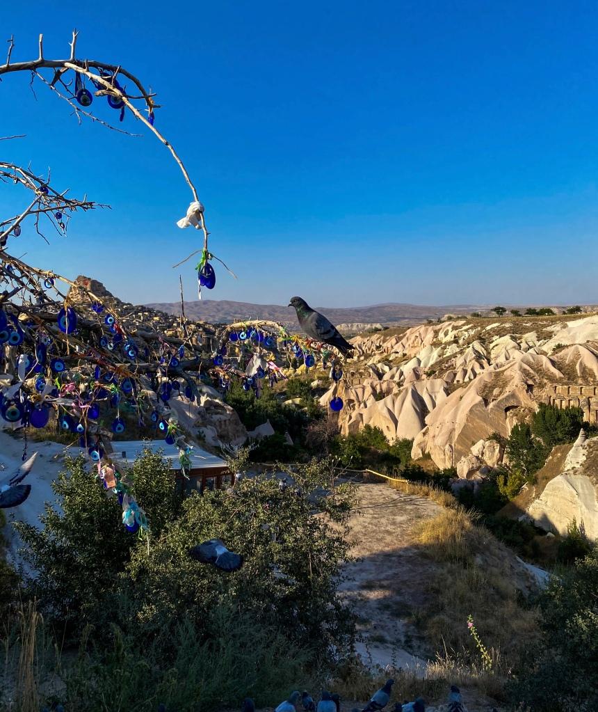 pigeon_valley_cappadocia_turkey