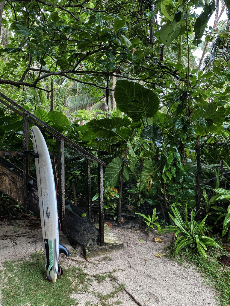 siargao_philippines_surf